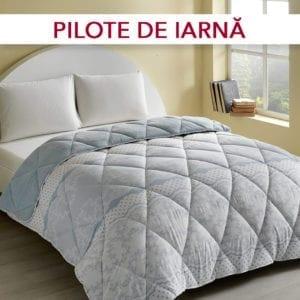 pilote de iarna conforter
